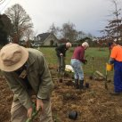 Extending the top planting 7. Cambridge Tree Trust